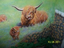 beautiful red scottish highland cows for mural